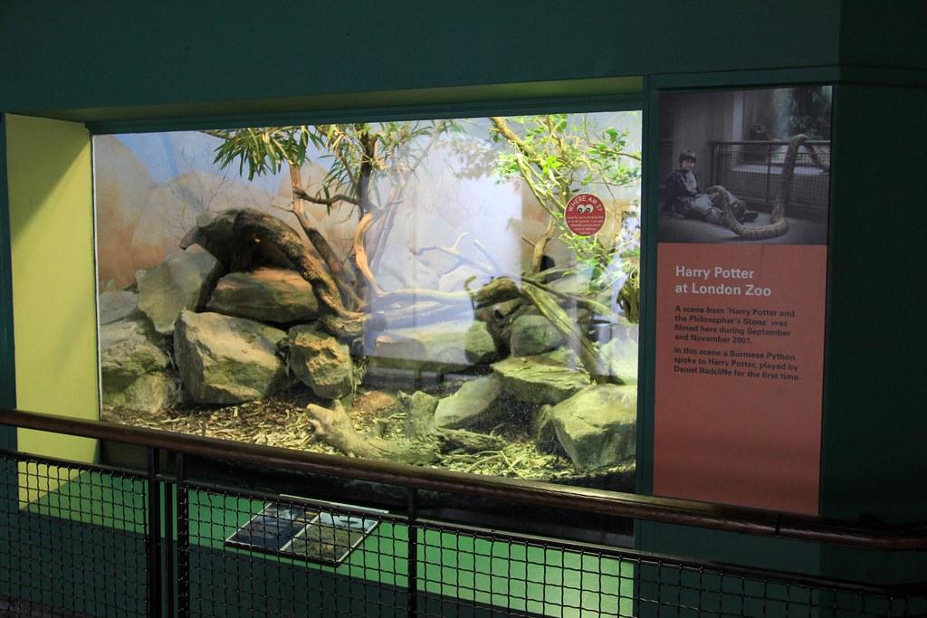 Harry Potter zoo de Londres lieux à visiter