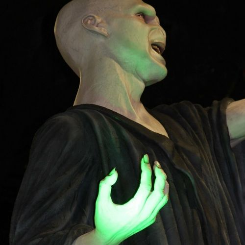 Passion Hp Harry Potter Voldemort